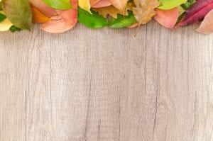 Red Oak Wood Plank